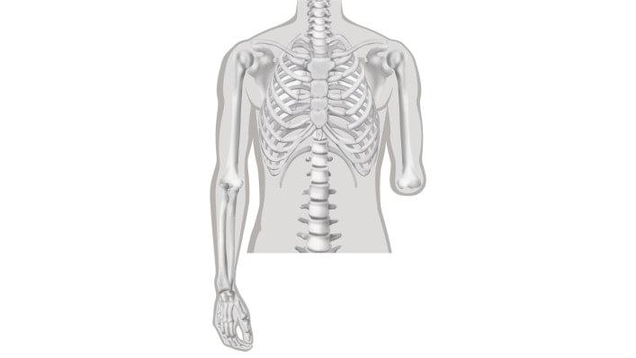 Armamputation und Rehabilitation | Ottobock AT